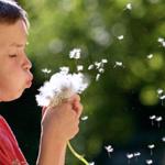 Asma e bronquite: perguntas e respostas
