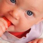 Introdução alimentar: entenda o método baby-led-weaning (BLW)