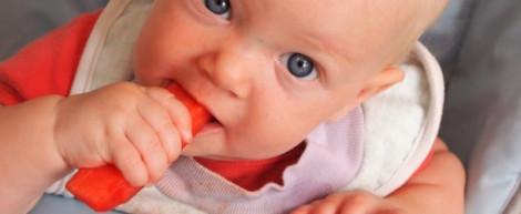 blw criança, pediatria descomplicada, dra kelly oliveira, introdução alimentar, pediatra sao paulo