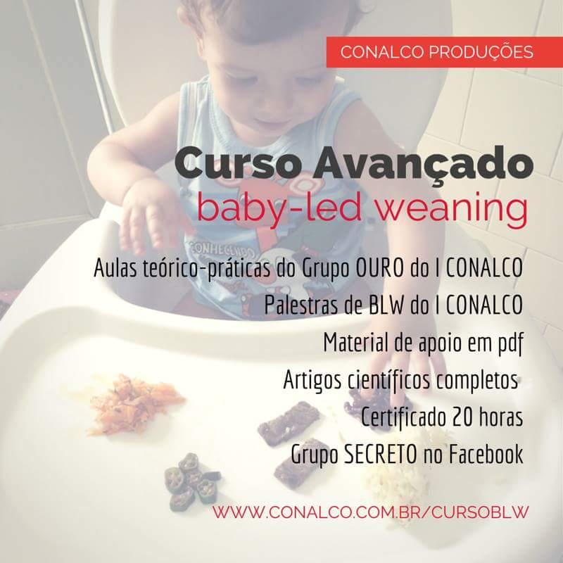 curso avançado blw, pediatria descomplicada, dra kelly oliveira, ta na hora do papa, conalco, blw, baby led weaning