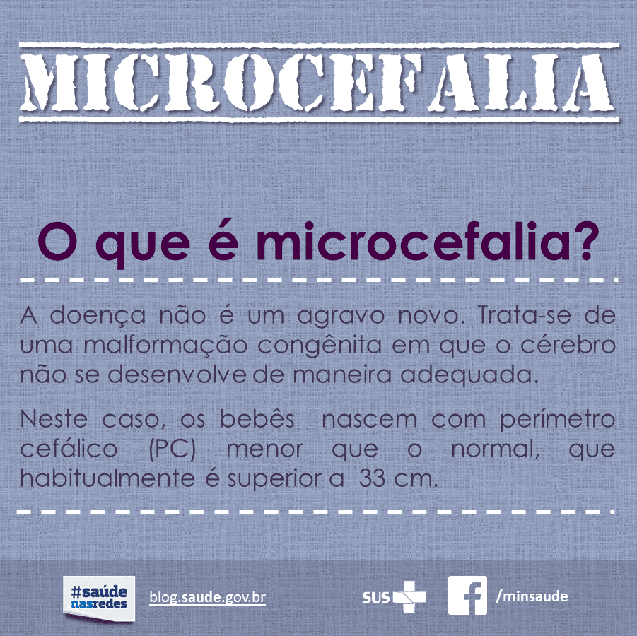 Microcefalia 01