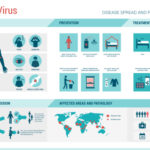 Estudo publicado no NEJM associa Zika vírus e microcefalia