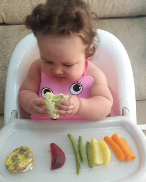 blw, baby led weaning, pediatria descomplicada, introdução alimentar